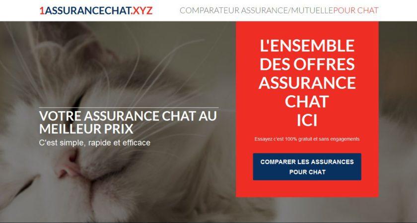 Comparateur d'assurances et de mutuelles pour chat