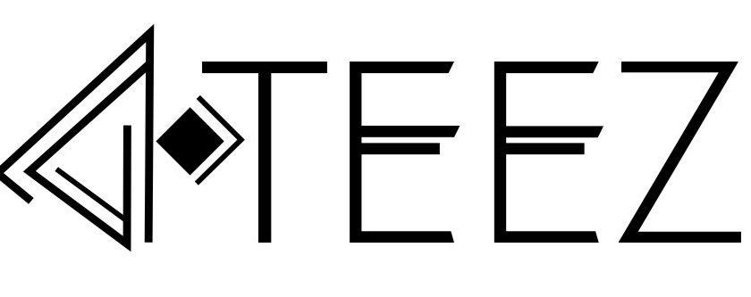 Teez, boutique française t-shirts