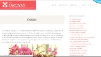 Mieux connaître les orchidées phalaenopsis avec SOS Orchid