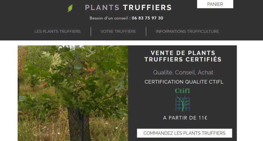 Plants Truffiers : vente en ligne de plants truffiers