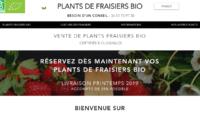 Où trouver des plants de fraisiers bio ?