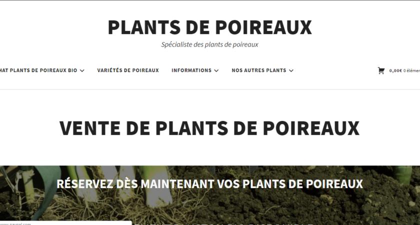 Plant de poireau