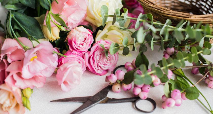 Jardinerie – Pépinière – Animalerie Fleuristerie – Décoration à Nivelles