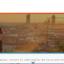 Excellis Patrimoine, conseillers en gestion de patrimoine à Lyon